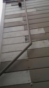 Dry rot repair 3